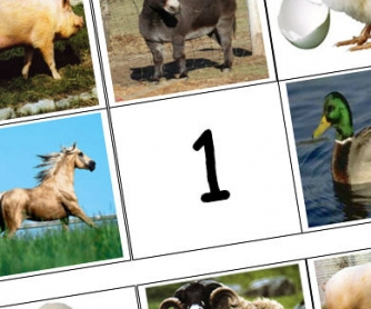 Animal Lotto Worksheet