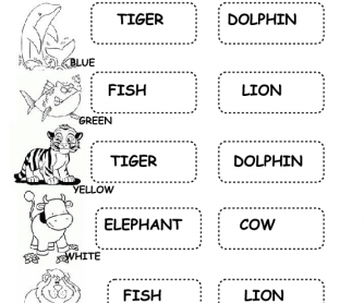 Animals Worksheet 2