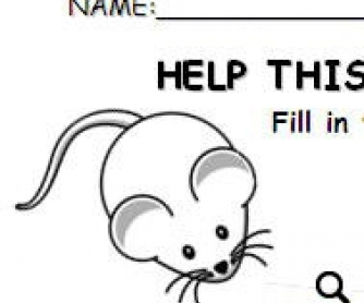 Help This Little Mouse Find the Way to its House