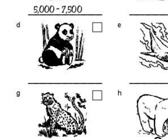 Endangered Species: Present Simple Worksheet