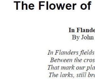 The Flower of Remebrance