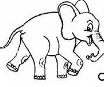 Bela and The Elephant Video