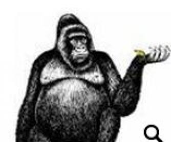 Zoo Animals: Vocabulary Worksheet
