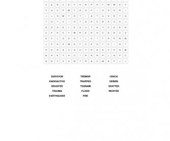 Disasters Word Search