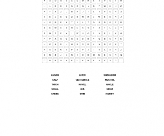 Body Parts Word Search