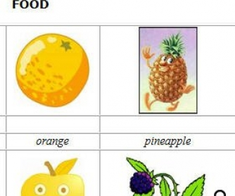 Food Flashcards 2