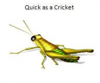 Quick as a Cricket: Similes Worksheet