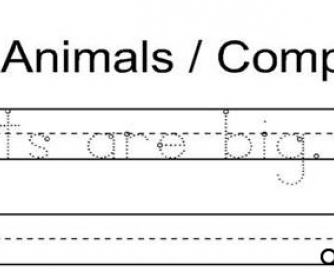 Animals / Comparatives
