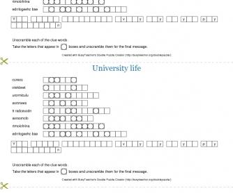 University Life Double Puzzle