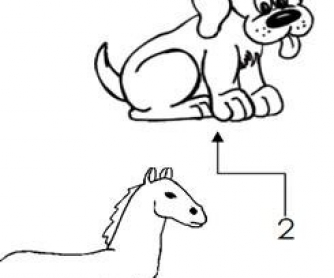 Animals Coloring Worksheet