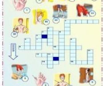 Body Picture crossword