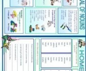 Plural Nouns Worksheet 2