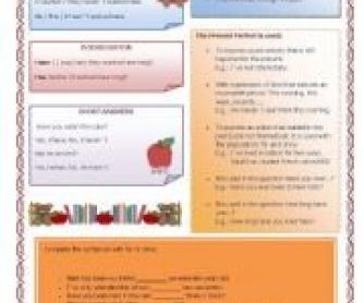 Present Perfect Tense worksheet 2