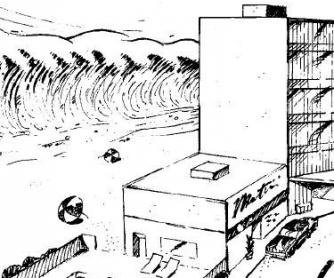 Natural Disaster Worksheet: Tsunami Curriculum: Grades K - 6