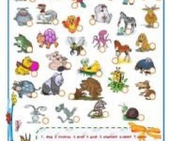 Animals Worksheet 2