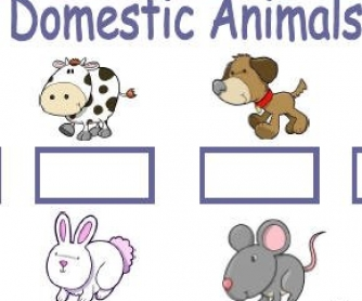 Domestic Animals and Pets Worksheet
