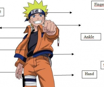 Body Parts of an Animated Manga Character