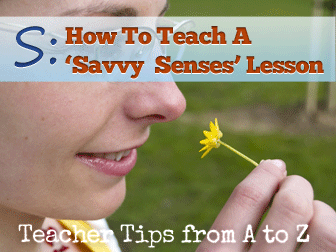 S: Savvy Senses - It's All About Observation [Teacher Tips from A to Z]