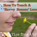 "S: Savvy Senses - It""s All About Observation [Teacher Tips from A to Z]"