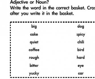 Noun and Adjective Assessment