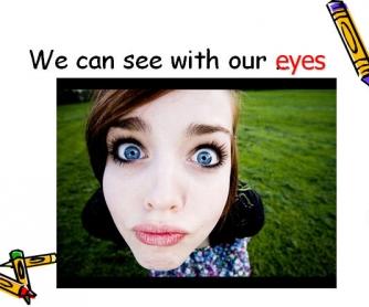 Our Five Senses: Presentation