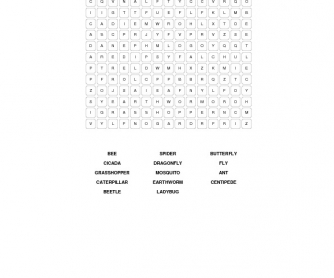 Little Creatures Word Search (Insects)