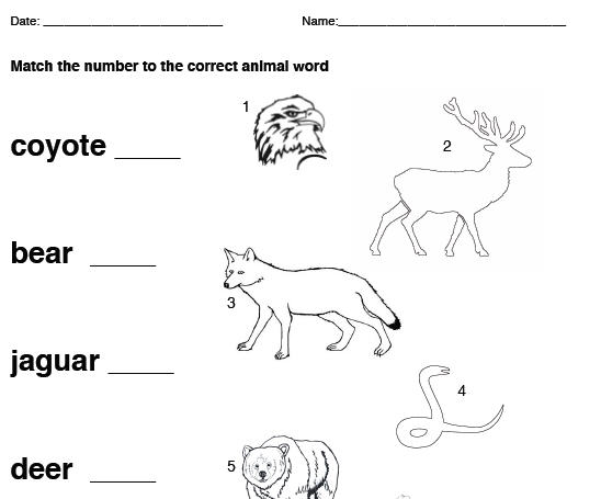 American Animal Vocab Matching – Native American Worksheets