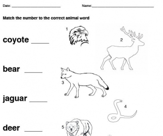 Native American Animal Vocab Matching