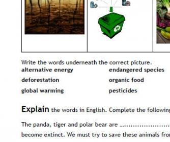Environment: Basic Vocabulary