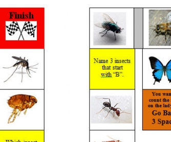 Insects Board Game
