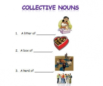 Collective Nouns Activity