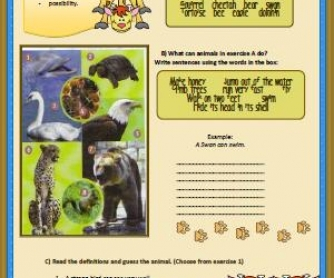 Animals and Modal Verbs Worksheet