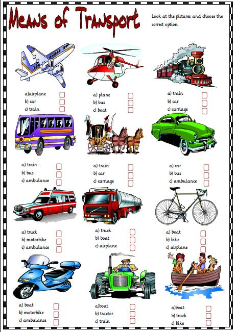 of Transport Multiple Choice Activity