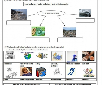 Pollution Worksheet