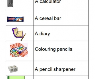 Pair Work Worksheet: Have You Got A... ?