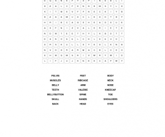 Body Parts Vocabulary Word Search