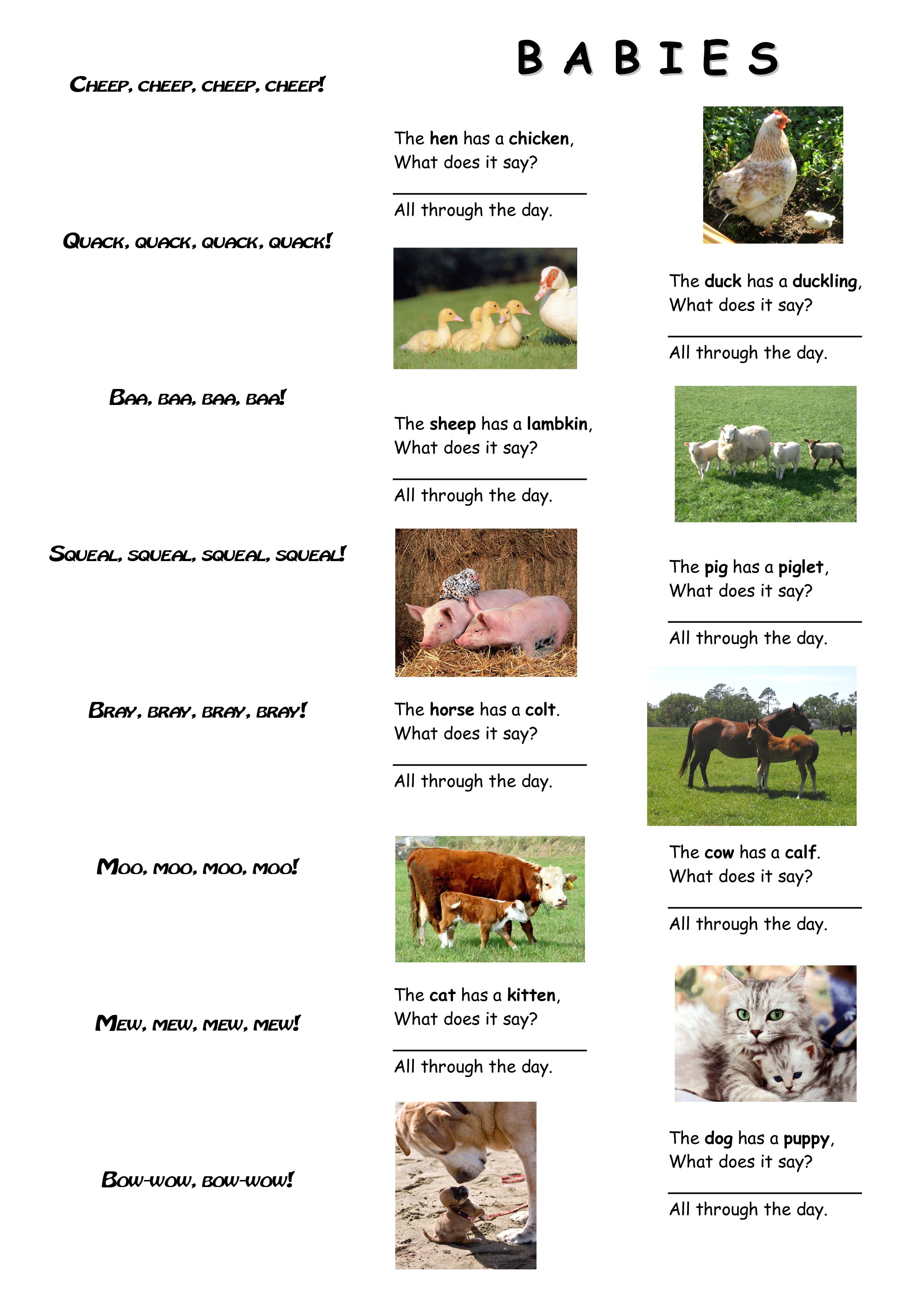 What Do Animals Say A Poem For Kids
