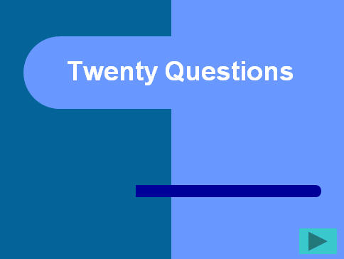 20 Questions: A Funny Game