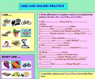 Likes & Dislikes Practice