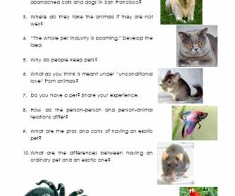 Cats, Dogs and... Tarantulas [VIDEO worksheet]
