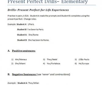 Present Perfect Drill