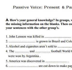 Voice Worksheet: Present and Past