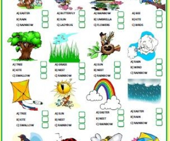 Spring Multiple Choice Activity