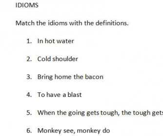 Idioms Matching Exercise