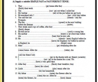 Past Perfect vs Past Perfect Continuous Worksheet