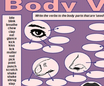 Body Verbs Worksheet