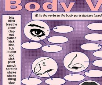 Body Verbs Worksheet