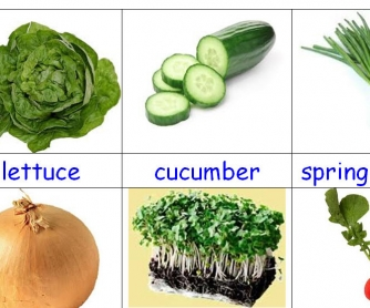 Salad Vegetables Flashcards