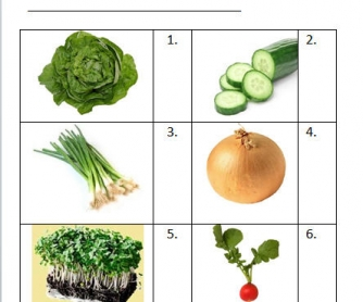 Salad Vegetables: Vocabulary Test