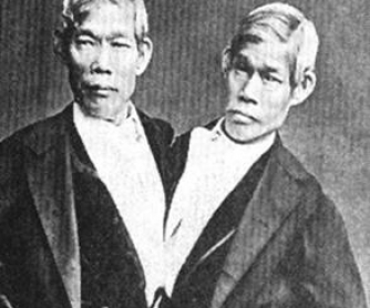 The Twins of Siam